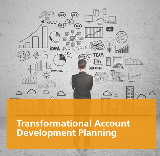 Transformational Account Development Planning